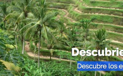 Descubriendo Bali